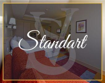 standart-oda-sv-business-hotel